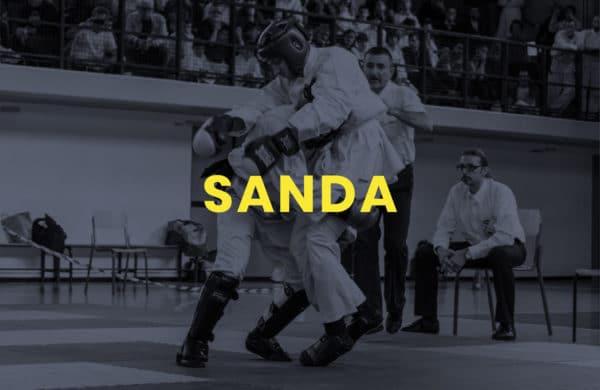 Corsi di Kung Fu Sanda / Sanshou