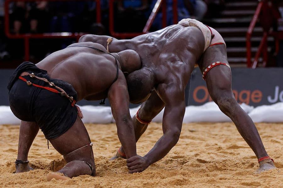 Lotta Senegalese